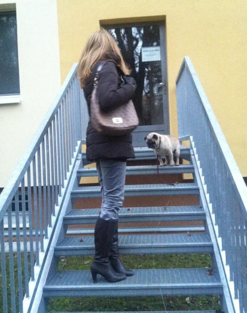 venceni-psa-v-zime