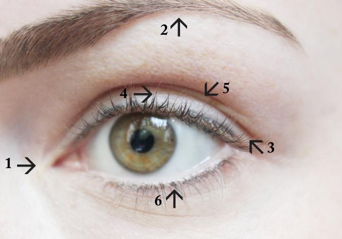 oko-stiny