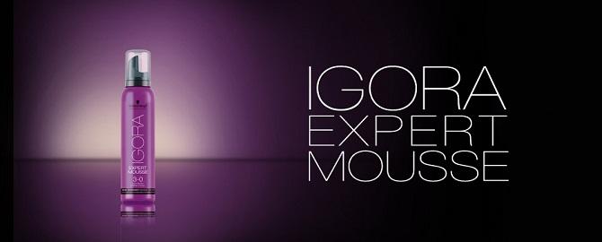 IGORA EXPERT MOUSSE